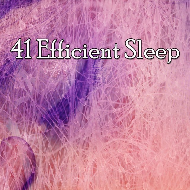 41 Efficient Sle - EP