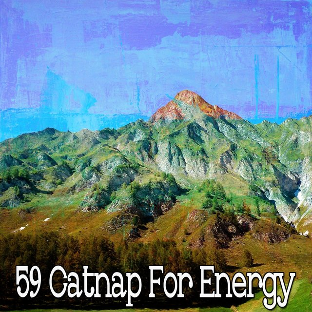 59 Catnap For Energy