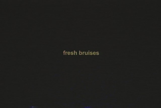 fresh bruises (Lyric Video)