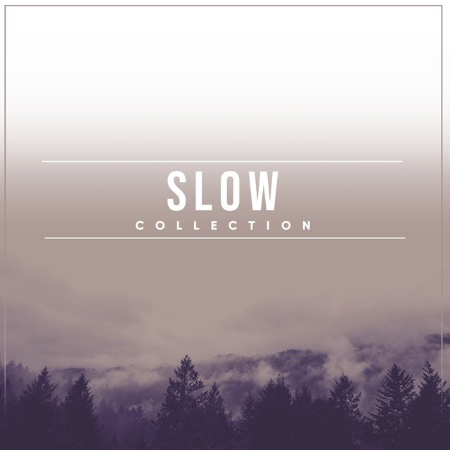 # 1 Album: Slow Collection