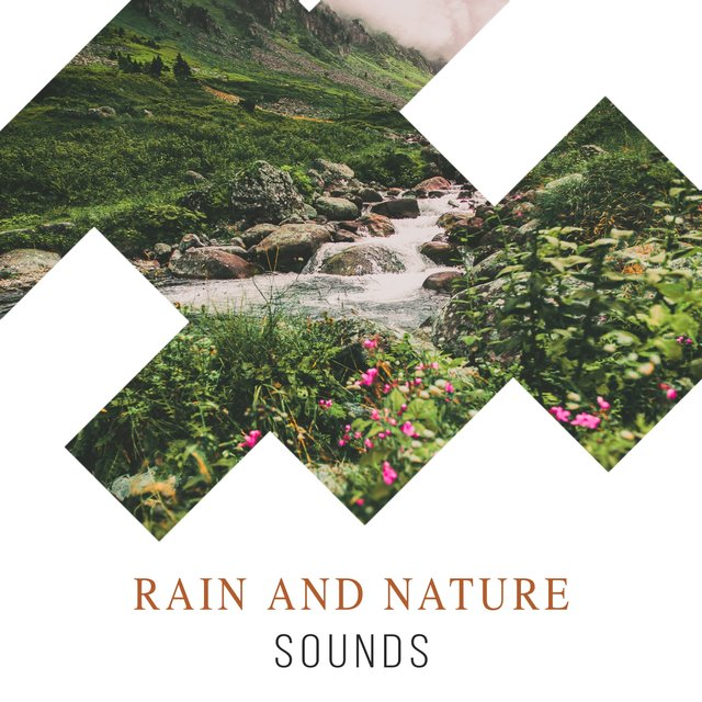 Looping Ambient Rain and Nature Sounds