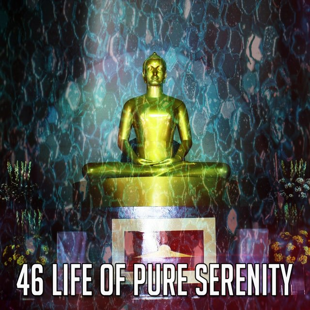 46 Life Of Pure Serenity
