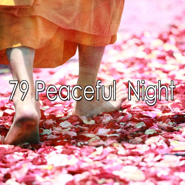 79 Peaceful Night