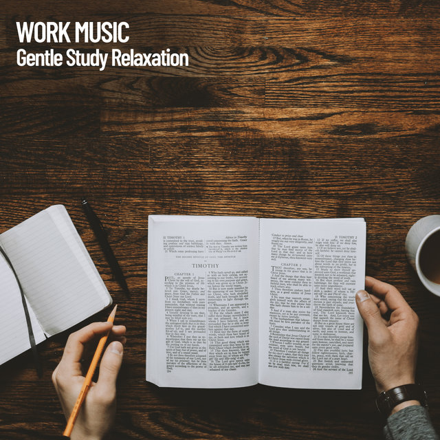 Work Music: Gentle Study Relaxation