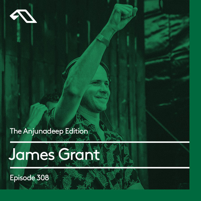The Anjunadeep Edition 308