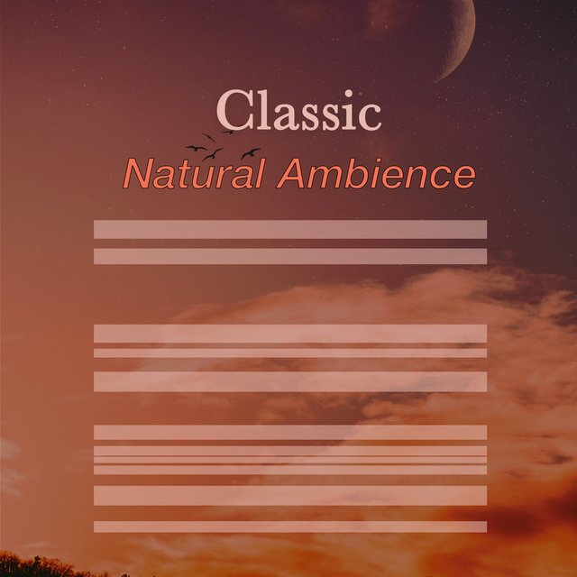 # 1 Album: Classic Natural Ambience