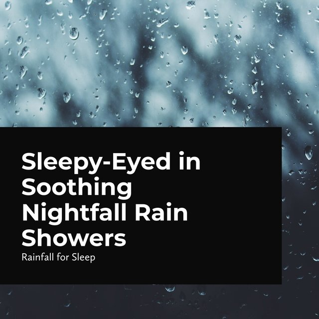 Sleepy-Eyed in Soothing Nightfall Rain Showers