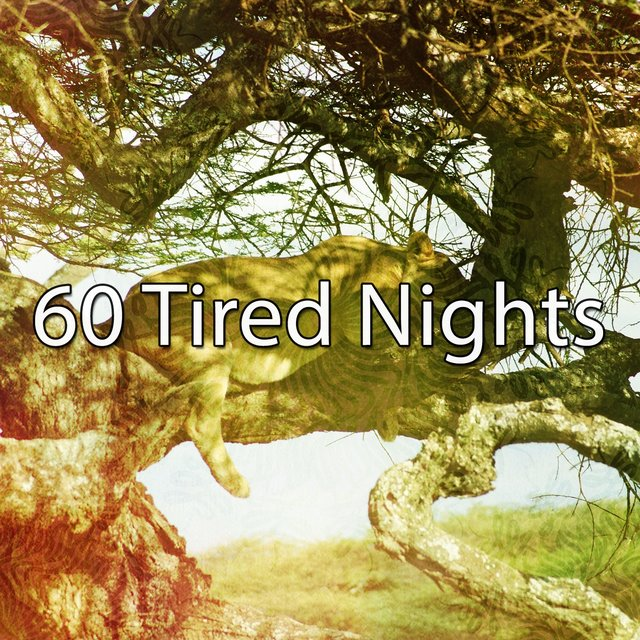 60 Tired Nights