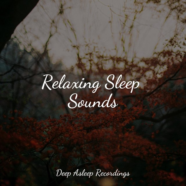 Relaxing Sleep Sounds