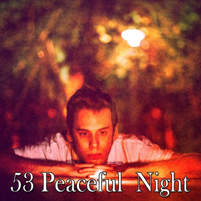 53 Peaceful Night