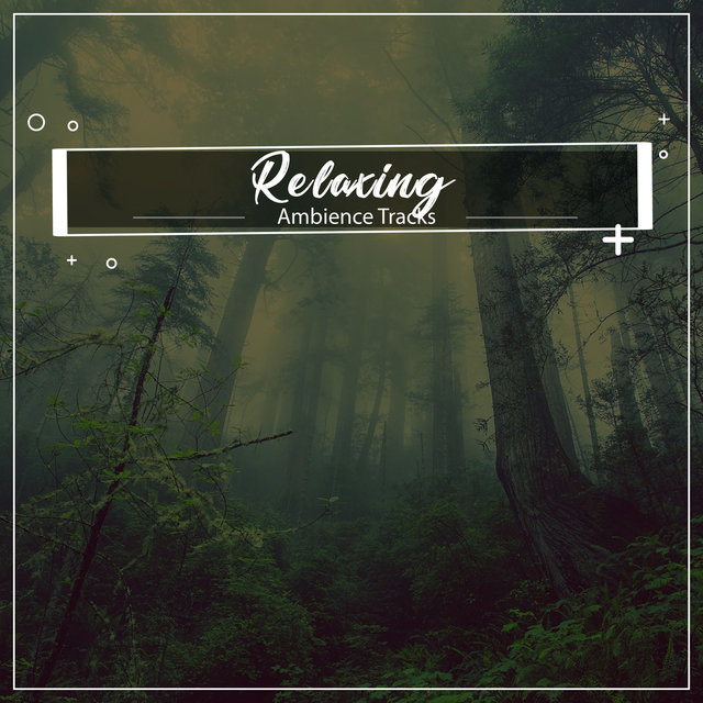 #19 Relaxing Ambience Tracks for Inner Peace