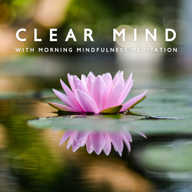 Clear Mind with Morning Mindfulness Meditation - Nature Sounds for Yoga, Positive Energy, Sleep, Calm, Relaxation