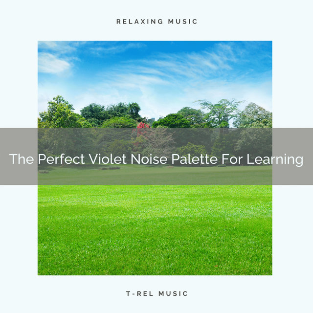 The Perfect Violet Noise Palette For Learning