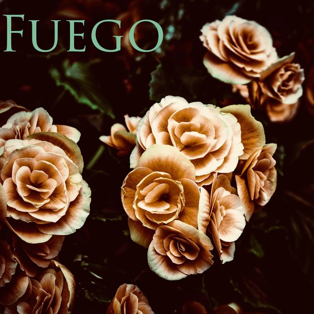 Cover art for album Fuego by King Jenkins