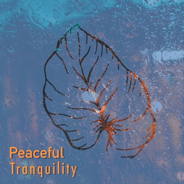 # 1 A 2019 Album: Peaceful Tranquility