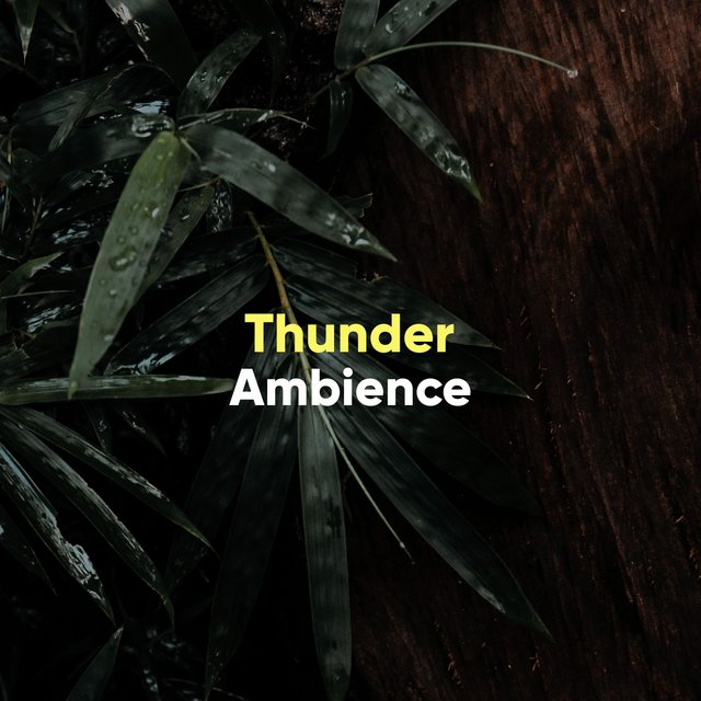 Quiet Thunder Background Ambience