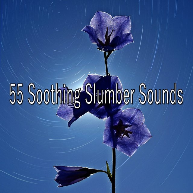 55 Soothing Slumber Sounds