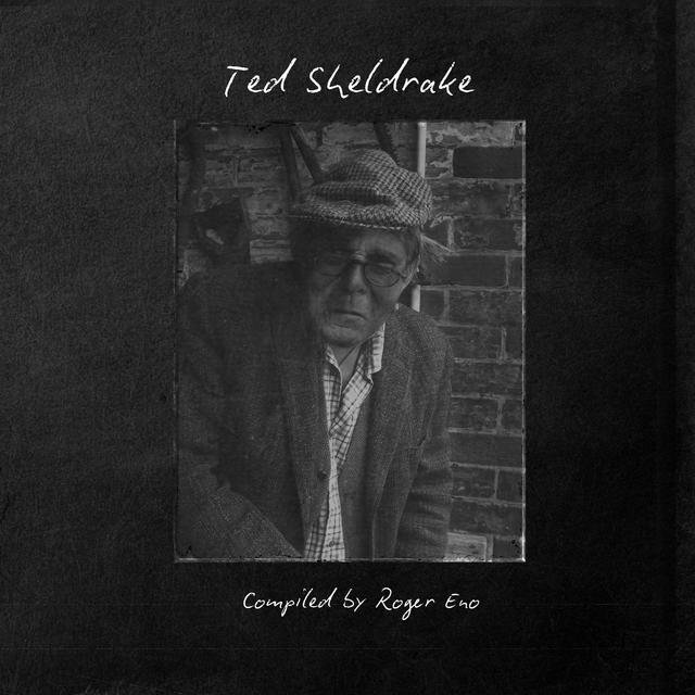 Ted Sheldrake