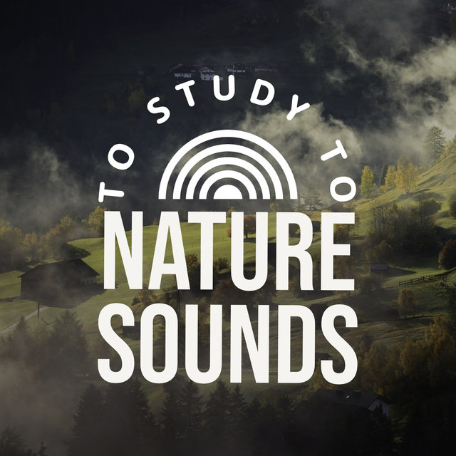 Nature Sounds To Study To
