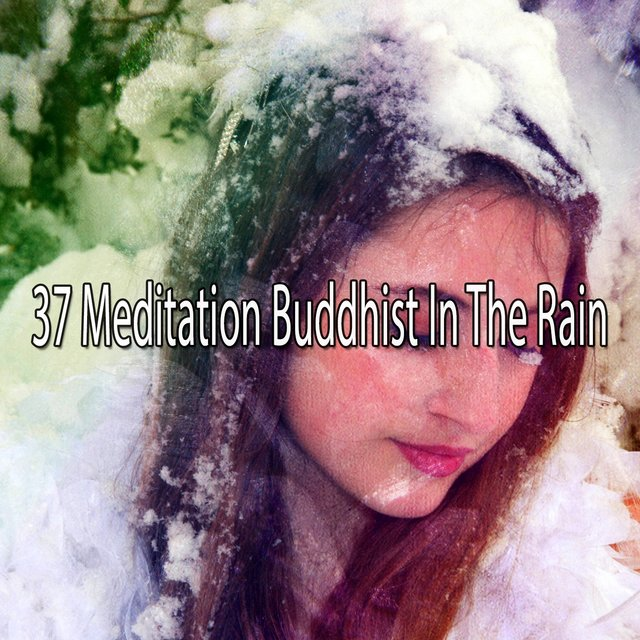 37 Meditation Buddhist in the Rain