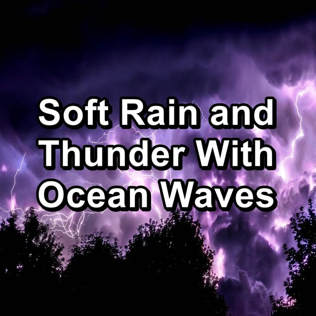 Soft Rain and Thunder With Ocean Waves