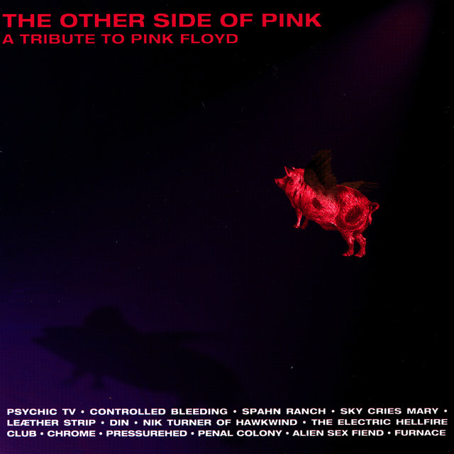 The Other Side Of Pink - A Tribute To Pink Floyd