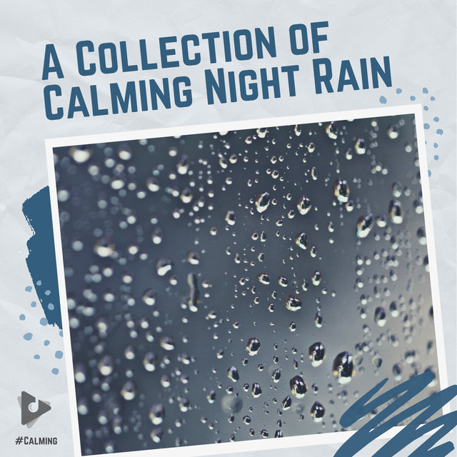 A Collection of Calming Night Rain