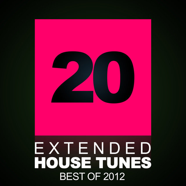 20 Extended House Tunes - Best Of 2012