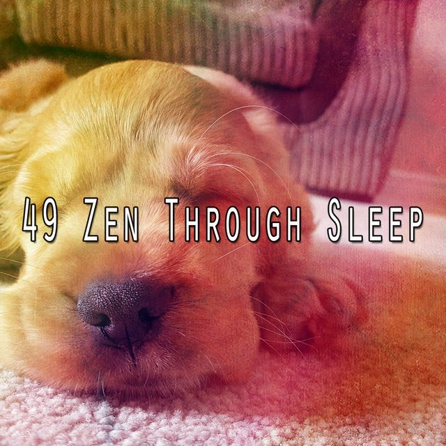49 Zen Through Sle - EP