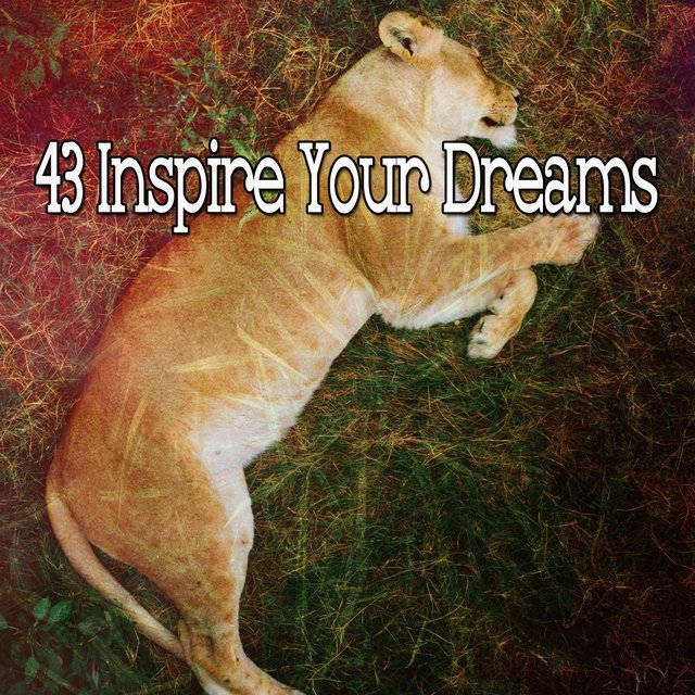 43 Inspire Your Dreams