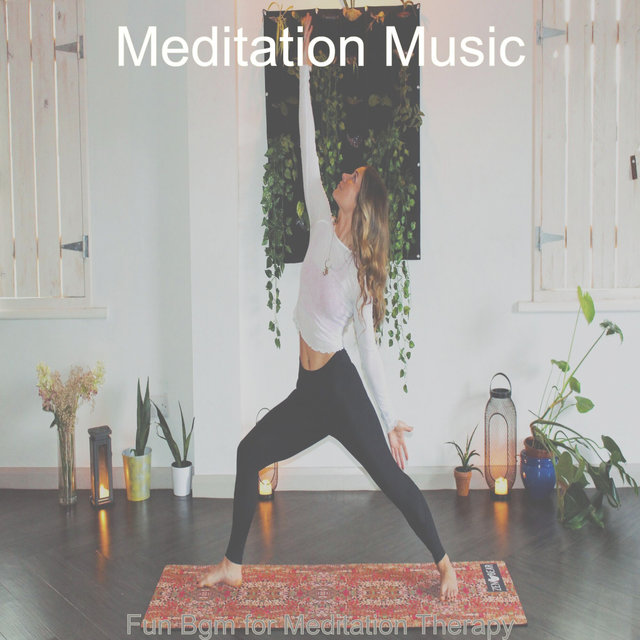 Fun Bgm for Meditation Therapy