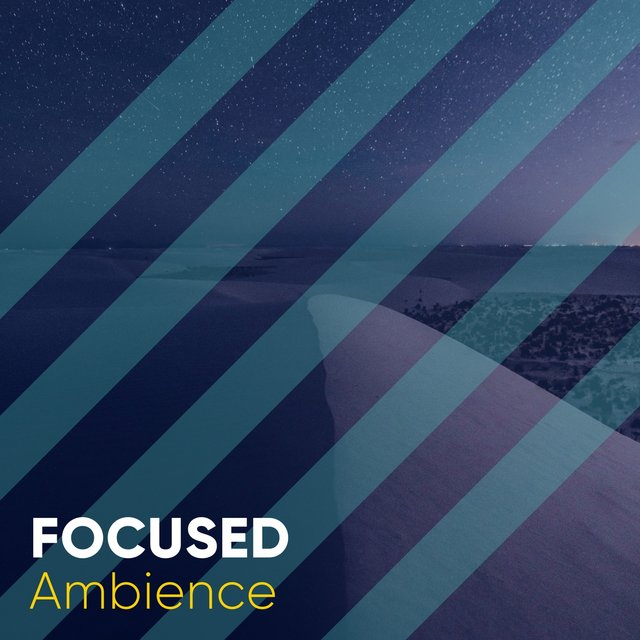 # 1 A 2019 Album: Focused Ambience