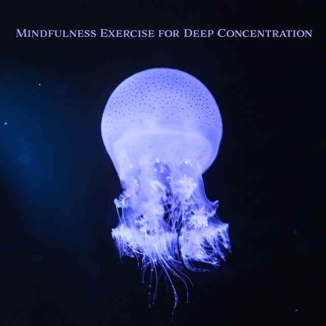 Mindfulness Exercise for Deep Concentration