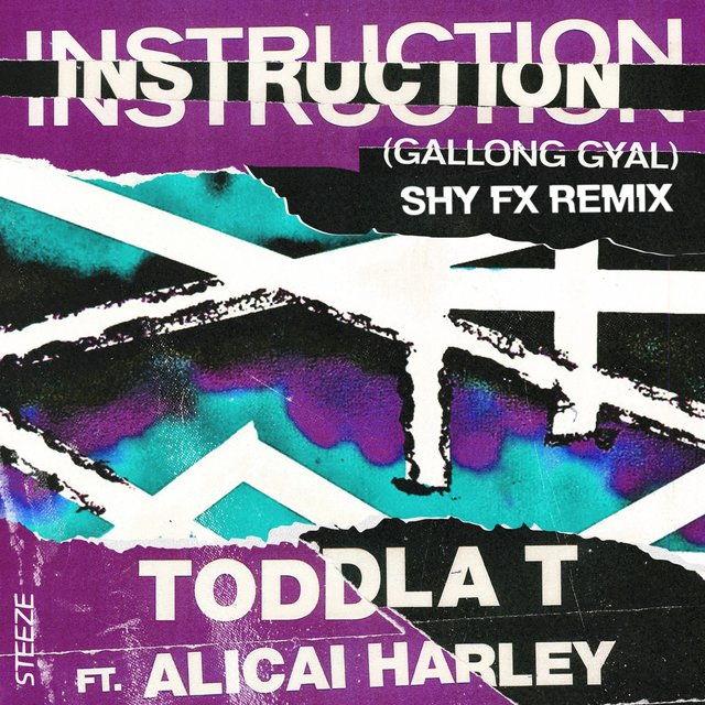 Instruction (Gallong Gal)