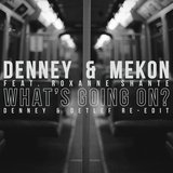 What's Going On? (feat. Roxanne Shante) [Denney & Detlef Re-edit]