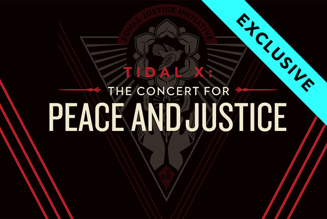 Live at The Concert for Peace and Justice