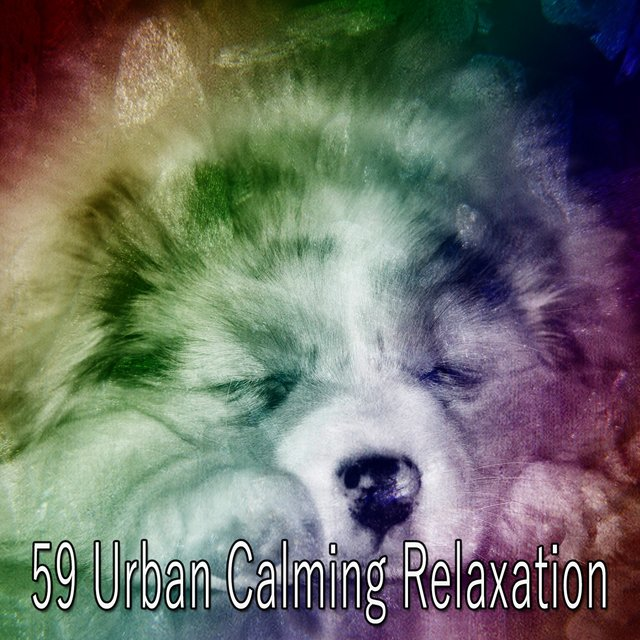 59 Urban Calming Relaxation