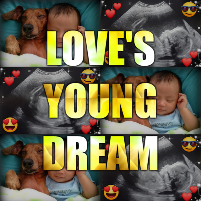 Love's Young Dream