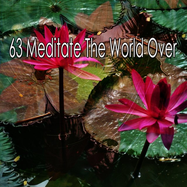 63 Meditate the World Over