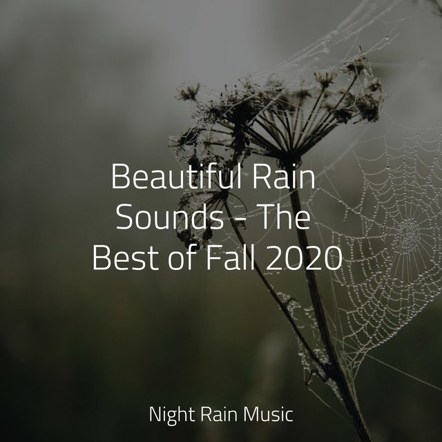 Beautiful Rain Sounds - The Best of Fall 2020