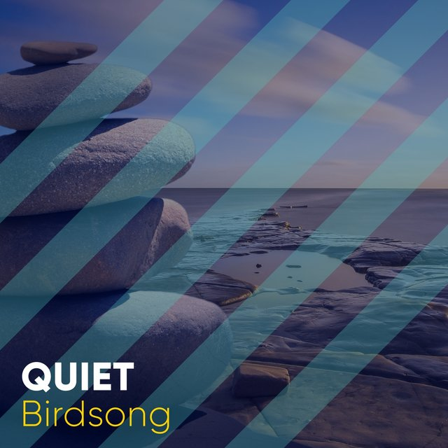 # 1 Album: Quiet Birdsong