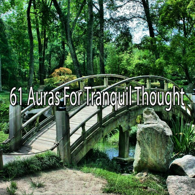 61 Auras for Tranquil Thought