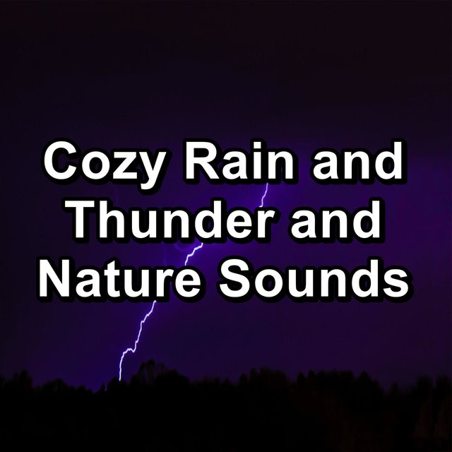 Cozy Rain and Thunder and Nature Sounds
