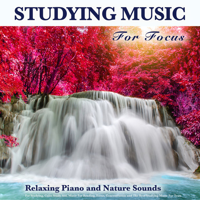 Studying Music For Focus: Relaxing Piano and Nature Sounds For Studying, Calm Study Aid, Music For Reading, Focus, Concentration and The Best Studying Music For Tests