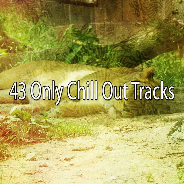 43 Only Chill out Tracks