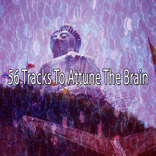 56 Tracks to Attune the Brain