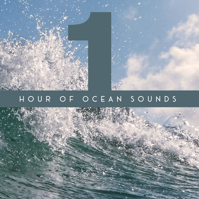 1 Hour of Ocean Sounds - Collection of Majestic Wave Sounds, Perfect New Age Background for Meditation, Relaxation, Sleep and Study