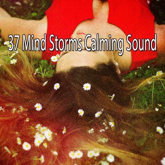 37 Mind Storms Calming Sound
