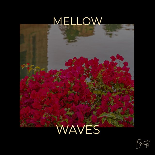 Mellow Waves Beats