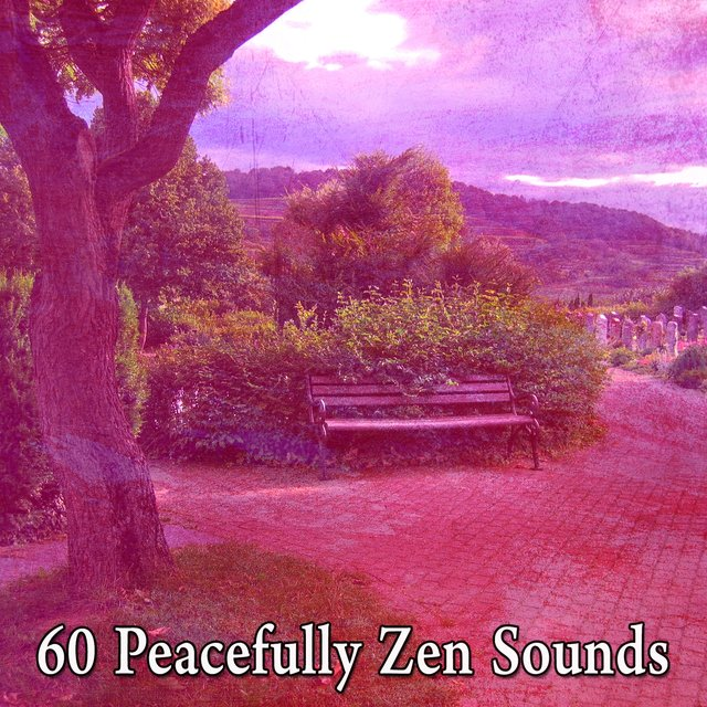60 Peacefully Zen Sounds